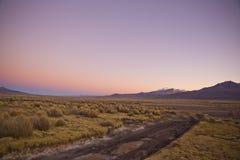 Ανατολή στα βουνά των Άνδεων Φυσικό πάρκο Sajama, Βολιβία Στοκ Εικόνες