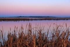 Ανατολή στη λίμνη χήνων Στοκ Εικόνες
