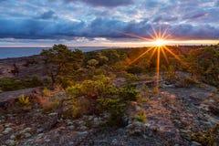 Ανατολή στη δύσκολη ακτή θάλασσας με τα πεύκα Στοκ Εικόνες