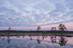 Ανατολή στο έλος Παγωμένο κρύο έλος Παγωμένο έδαφος Λίμνη και φύση ελών Οι θερμοκρασίες παγώματος δένουν μέσα Φυσικό περιβάλλον M Στοκ φωτογραφίες με δικαίωμα ελεύθερης χρήσης