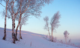 Ανατολή το χειμώνα Στοκ Εικόνες