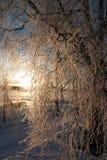 Ανατολή Στοκ εικόνα με δικαίωμα ελεύθερης χρήσης