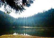Ακτίνες του φωτός Στοκ Εικόνα