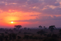 Ανατολή Kruger Στοκ φωτογραφία με δικαίωμα ελεύθερης χρήσης