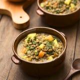 ανατολική μέση σούπα φακών τροφίμων λιβανέζικη Στοκ Εικόνες