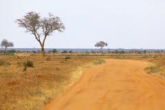 Ανατολικό εθνικό πάρκο Tsavo, Κένυα Στοκ φωτογραφία με δικαίωμα ελεύθερης χρήσης