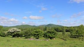 Ανατολικό τοπίο δήμων στοκ φωτογραφία