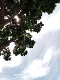 Ανατρέξτε στον ουρανό Στοκ φωτογραφίες με δικαίωμα ελεύθερης χρήσης