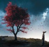Ανατρέχει σε ένα κόκκινο δέντρο Στοκ Φωτογραφία