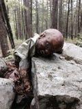 Ανατριχιαστική βαθιά κούκλα ξύλων Στοκ φωτογραφία με δικαίωμα ελεύθερης χρήσης