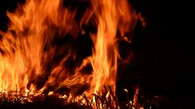 Αναφλέγοντας πυρκαγιά που απομονώνεται στο μαύρο υπόβαθρο απόθεμα βίντεο