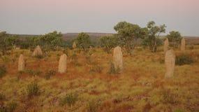 Αναχώματα τερμιτών στον εσωτερικό Αυστραλία Στοκ Εικόνες