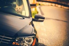 Αναχώρηση του σκυλιού σε ένα αυτοκίνητο στοκ φωτογραφίες