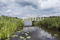 Αναψυχή Nationaal Park de Weerribben το καλοκαίρι στοκ φωτογραφία με δικαίωμα ελεύθερης χρήσης