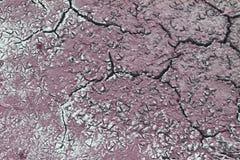 Αναδρομικές τυπωμένες ύλες ποδιών πουλιών στην ξηρά ραγισμένη σύσταση ρύπου στοκ φωτογραφία