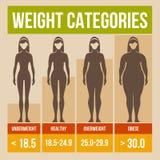 Αναδρομική αφίσα μαζικών δεικτών σώματος. ελεύθερη απεικόνιση δικαιώματος