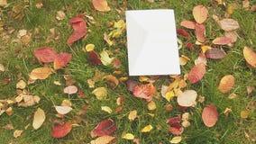 Αναδρομική επιστολή στη χλόη με τα φύλλα η έννοια φθινοπώρου απομόνωσε το λευκό φιλμ μικρού μήκους