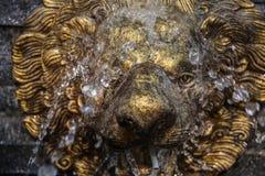 Αναδρομική πηγή αγαλμάτων λιονταριών ενώ το νερό ανατρέπει στο πρόσωπό της Στοκ φωτογραφίες με δικαίωμα ελεύθερης χρήσης