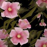 Αναδρομικό αφηρημένο άνευ ραφής υπόβαθρο σύστασης σχεδίων λουλουδιών Στοκ Εικόνα