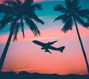 Αναδρομικό επιβατηγό αεροσκάφος με τους φοίνικες Στοκ φωτογραφία με δικαίωμα ελεύθερης χρήσης