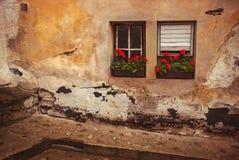 Αναδρομικό σπίτι εξωτερικό με δύο παράθυρα και τα κόκκινα λουλούδια Στοκ εικόνες με δικαίωμα ελεύθερης χρήσης