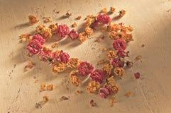 Αναδρομικό υπόβαθρο με τα ξηρά τριαντάφυλλα Στοκ εικόνες με δικαίωμα ελεύθερης χρήσης
