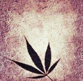 Αναδρομικό υπόβαθρο φυτών σκιαγραφιών φύλλων μαριχουάνα Στοκ φωτογραφία με δικαίωμα ελεύθερης χρήσης