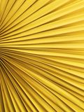 ανεμιστήρας κίτρινος Στοκ Εικόνες