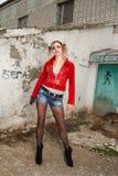 Ανεμιστήρας Harley Quinn Στοκ Εικόνες