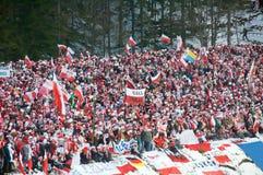 ανεμιστήρες που πηδούν το σκι Στοκ εικόνες με δικαίωμα ελεύθερης χρήσης