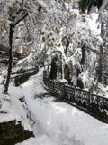 Ανεμιστήρες χιονιού Στοκ φωτογραφίες με δικαίωμα ελεύθερης χρήσης