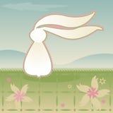 ανεμοδαρμένο bunny Στοκ εικόνα με δικαίωμα ελεύθερης χρήσης