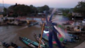 Ανεμοδείκτης λουλουδιών, λίμνη Inle, το Μιανμάρ απόθεμα βίντεο