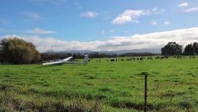 Ανεμοπλάνο, πειραματική προσγείωση χόμπι στον αγροτικό τομέα, Νέα Ζηλανδία απόθεμα βίντεο