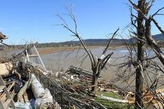 ανεμοστρόβιλος όχθεων της λίμνης στοκ φωτογραφία με δικαίωμα ελεύθερης χρήσης
