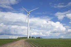 Ανεμοστρόβιλοι στον τομέα σόγιας την ηλιόλουστη ημέρα με τα σύννεφα και το μπλε Στοκ εικόνα με δικαίωμα ελεύθερης χρήσης