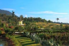 Ανεμοστρόβιλος στο σύγχρονο κήπο από την Ταϊλάνδη Στοκ Φωτογραφίες