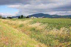 Ανεμοδαρμένες κοιλάδα και γεωργική γη Στοκ φωτογραφία με δικαίωμα ελεύθερης χρήσης