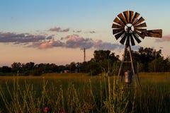 Ανεμόμυλος για να εξαγάγει το νερό Τομέας των λουλουδιών κατά τη διάρκεια του ηλιοβασιλέματος στοκ εικόνες