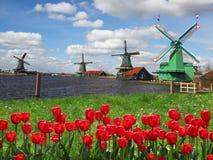 Ανεμόμυλοι στην Ολλανδία με το κανάλι Στοκ φωτογραφίες με δικαίωμα ελεύθερης χρήσης