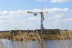 Ανεμόμυλος στους ολλανδικούς τομείς και τα λιβάδια Στοκ εικόνα με δικαίωμα ελεύθερης χρήσης