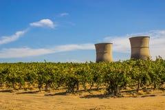 Ανενεργές πυρηνικές καπνοδόχοι πίσω από τον αμπελώνα σταφυλιών στοκ φωτογραφία