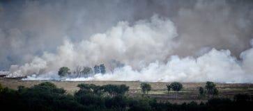 Ανεξέλεγκτη δασική φωτιά Αυστραλία 3 Στοκ Φωτογραφίες