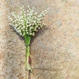 ανθίζει lilly την κοιλάδα Στοκ Εικόνες