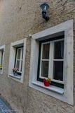 ανθίζει windowsill Στοκ φωτογραφία με δικαίωμα ελεύθερης χρήσης