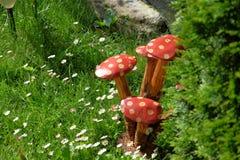 Ανθίζοντας άγρια λουλούδια Στοκ Εικόνες