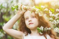 Ανθίζοντας δέντρα κερασιών εκμετάλλευσης μικρών κοριτσιών Στοκ φωτογραφίες με δικαίωμα ελεύθερης χρήσης