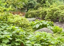 Ανθίζοντας δέντρα στο θερινό κήπο στοκ φωτογραφία