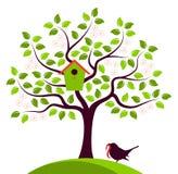 Ανθίζοντας δέντρο με να τοποθετηθεί το κιβώτιο πουλιών Στοκ Φωτογραφίες