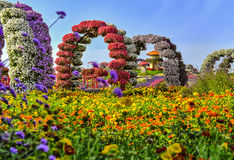 Ανθίζοντας αψίδες λουλουδιών στοκ εικόνα